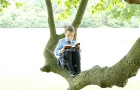 OBH pupil sitting in one of the many trees reading a book