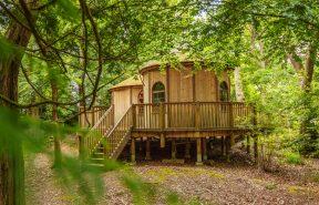 The Tree House Frensham Heights